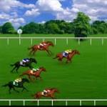 Royal Derby Racing Game